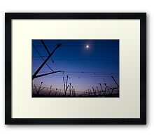 Vineyard at sunset. Photographed in Lachish region, Negev, Israel  Framed Print