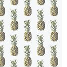 Pinapples! by 4ogo Design