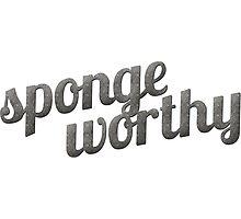Spongeworthy Photographic Print