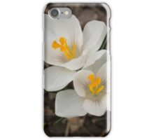 Bridal White Pair - Crocus Harbingers of Spring iPhone Case/Skin