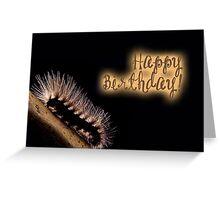 Happy Birthday - Caterpillar 03 Greeting Card