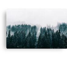 1.29 Canvas Print
