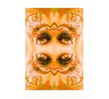 Eyes of a Mirror Art Print