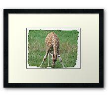 I am Too Tall Framed Print