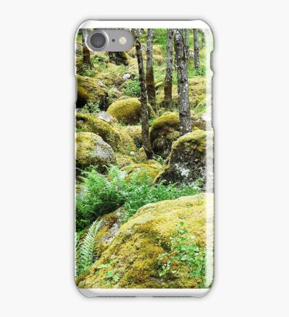 Moss and fern on the rocks iPhone Case/Skin