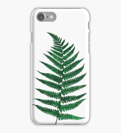 Fern iPhone Case/Skin