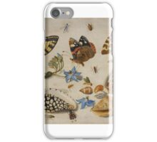 Insects and garden pansy, . Jan van Kessel the Elder 2,  iPhone Case/Skin