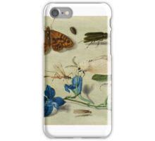 Insects and garden pansy, . Jan van Kessel the Elder 3 iPhone Case/Skin