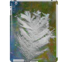Icy Feather iPad Case/Skin