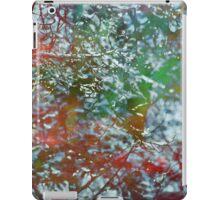 Wintry Green iPad Case/Skin