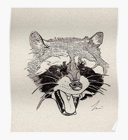 Rockin' Raccoon Poster