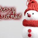 Merry Xmas - Snowman 03 by garigots