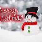 Merry Xmas - Snowman 05 by garigots