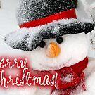 Merry Xmas - Snowman 06 by garigots