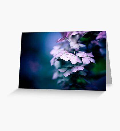 Passionate Hydrangea Greeting Card