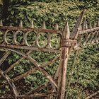 The Fence by pixelfan