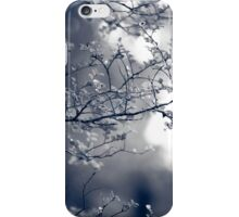 Ferns iPhone Case/Skin