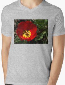 Bright and Red Sunny Tulip Mens V-Neck T-Shirt