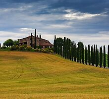 Val d'Orcia summer by MIRCEA COSTINA