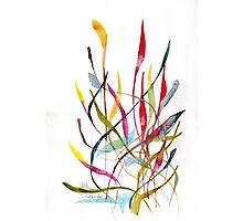 Unknown Flower 4 - Small Abstract Landscape, watercolor, ink & pencil on paper  Photographic Print