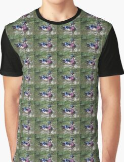 Male wood duck Graphic T-Shirt