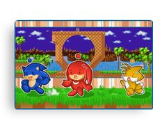 Sonic Chao and Friends Canvas Print