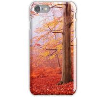 Burnham Beeches. November iPhone Case/Skin