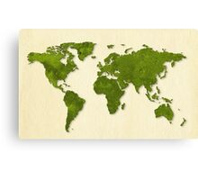 green grass,earth map,the whole world,trendy,modern,eco, Canvas Print