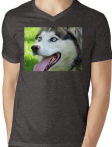Micky Blue Eyes -Siberian Husky Dog - NZ Mens V-Neck T-Shirt