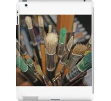 Which Brush? iPad Case/Skin