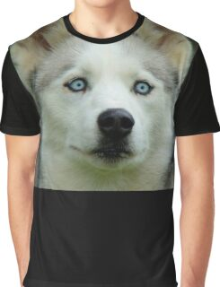 Look Into My Baby Blues!!! - Siberian Husky - NZ Graphic T-Shirt