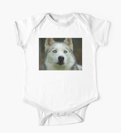 Look Into My Baby Blues!!! - Siberian Husky - NZ One Piece - Short Sleeve