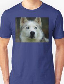 Look Into My Baby Blues!!! - Siberian Husky - NZ Unisex T-Shirt