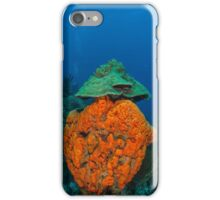 agelas clathrodes caribbean sea iPhone Case/Skin
