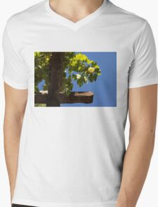 Harvest in the Sky Mens V-Neck T-Shirt