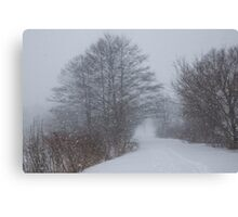 Snowstorm Magic Canvas Print