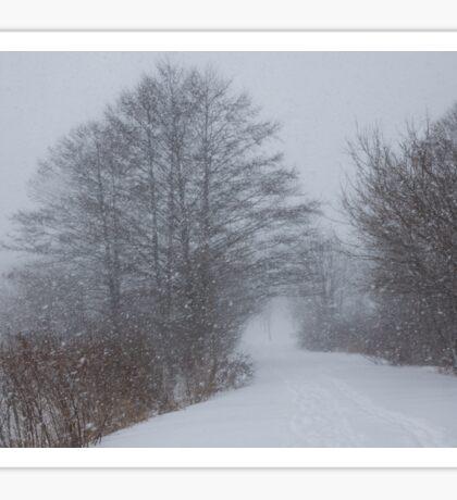Snowstorm Magic Sticker