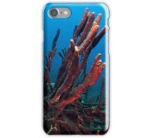 Aplysina cauliformis Beauty In Nature iPhone Case/Skin