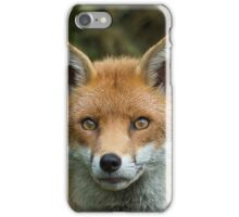 Red Fox portrait iPhone Case/Skin