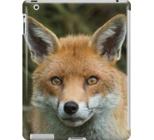Red Fox portrait iPad Case/Skin