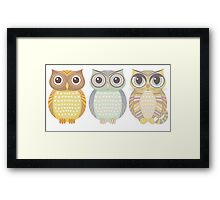 2 Owls & Big-Eyed Cat Framed Print