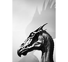 Harry Potter: Thestral Photographic Print