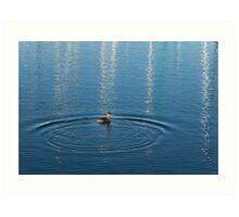 Ripples and Circles – Red-Necked Grebe Art Print