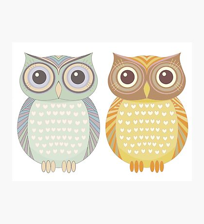 Cool Owl & Friendly Owl Photographic Print