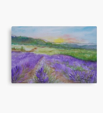 An Evening in Provence WC150601-12 Canvas Print
