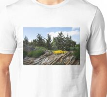 Rock Garden With Pines Unisex T-Shirt
