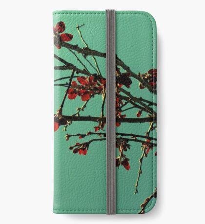 Orientique iPhone Wallet/Case/Skin