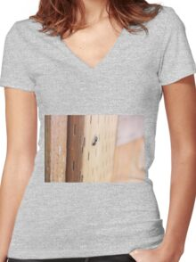 An Ant On The Fence Women's Fitted V-Neck T-Shirt