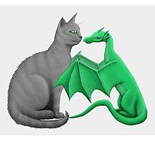 Gray Cat Meets Tiny Green Dragon Photographic Print