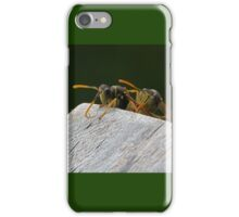 Wasps.......here he comes with that camera......!    iPhone Case/Skin